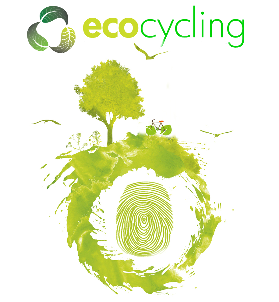eco-justice-creation